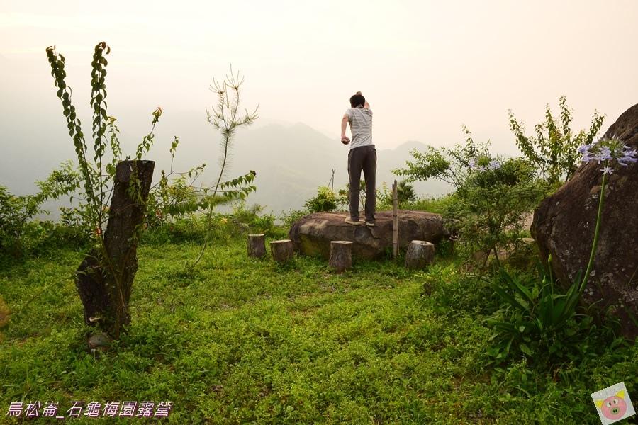 石龜梅園DSC_0398.JPG
