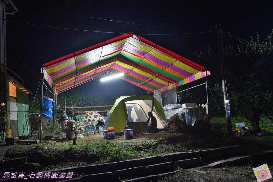 石龜梅園DSC_0421.JPG