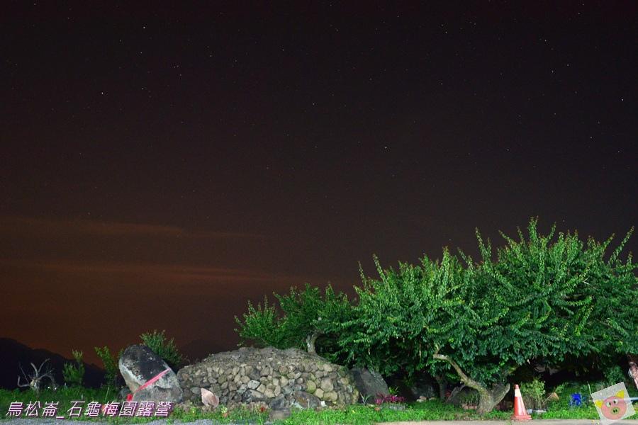 石龜梅園DSC_0428.JPG
