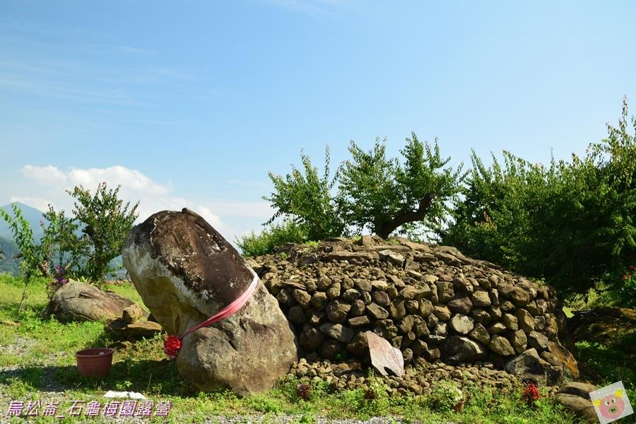 石龜梅園DSC_0501.JPG