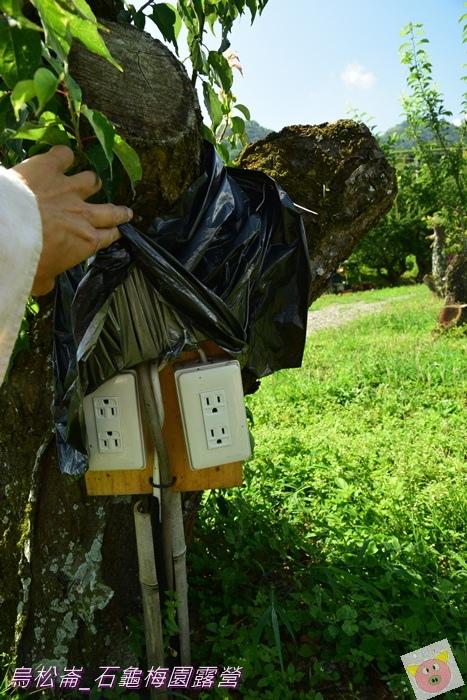石龜梅園DSC_0511.JPG