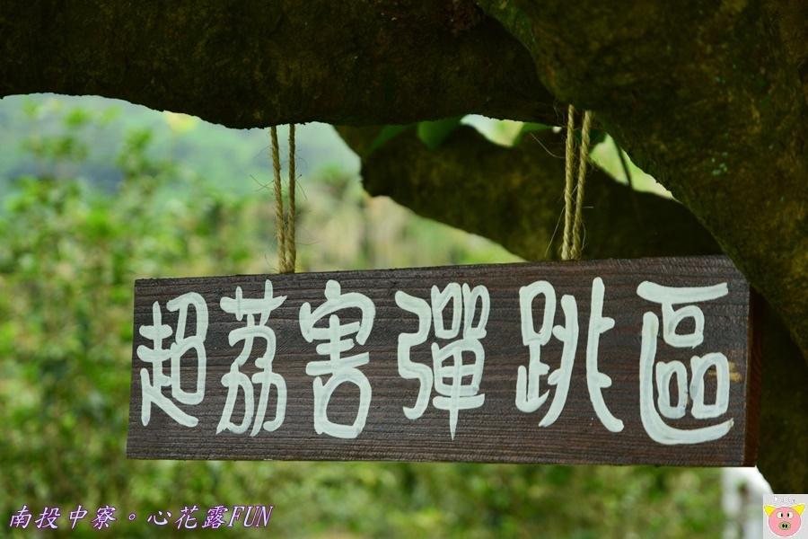 心花露FUNDSC_1783.JPG