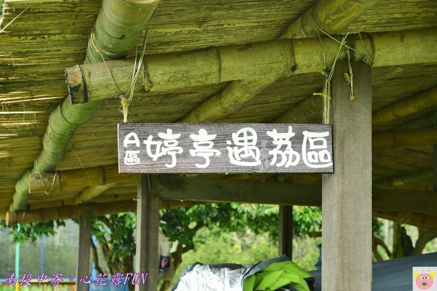 心花露FUNDSC_1792.JPG