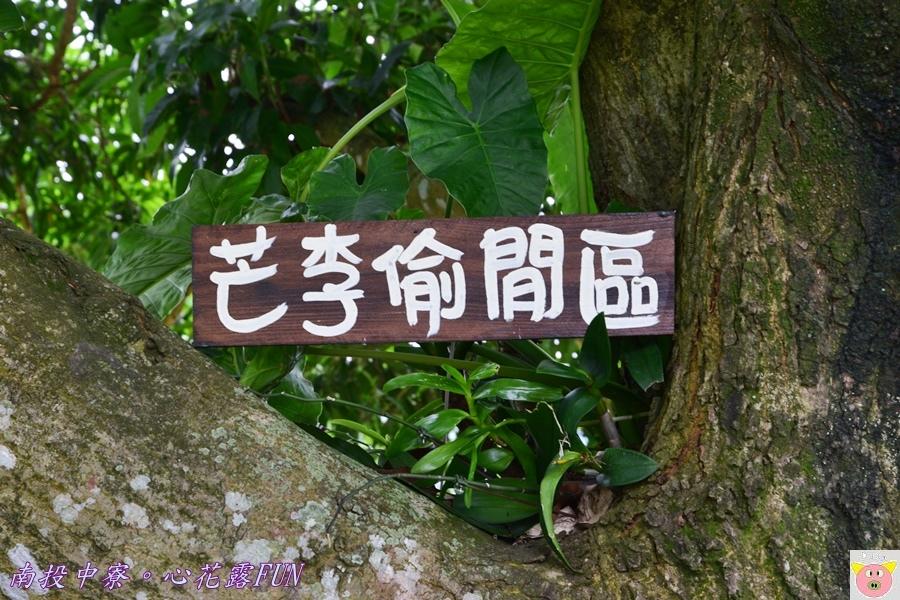 心花露FUNDSC_1865.JPG