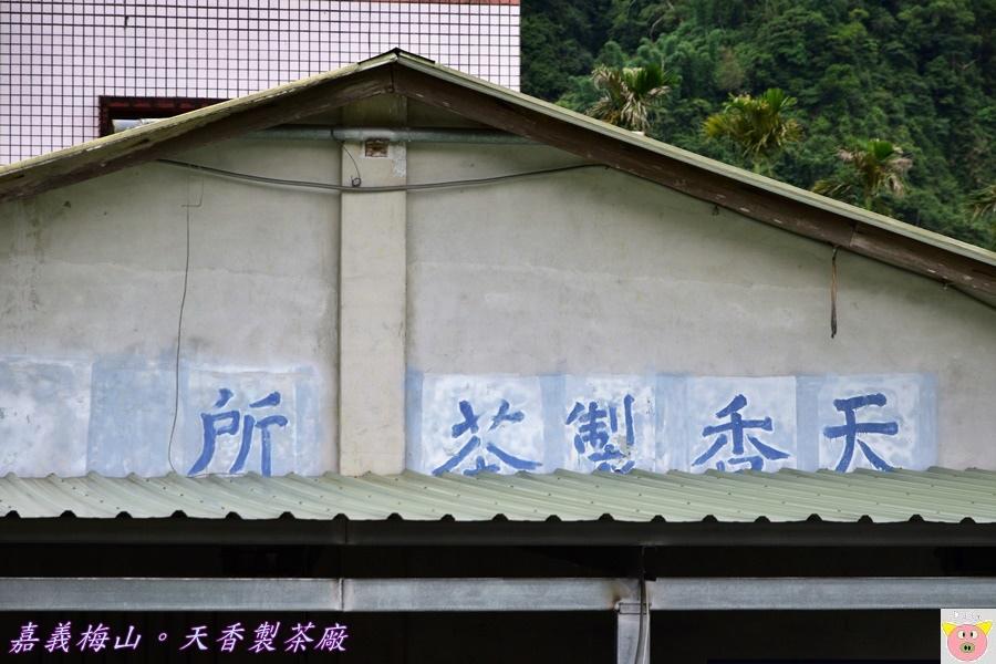天香製茶廠DSC_1985.JPG
