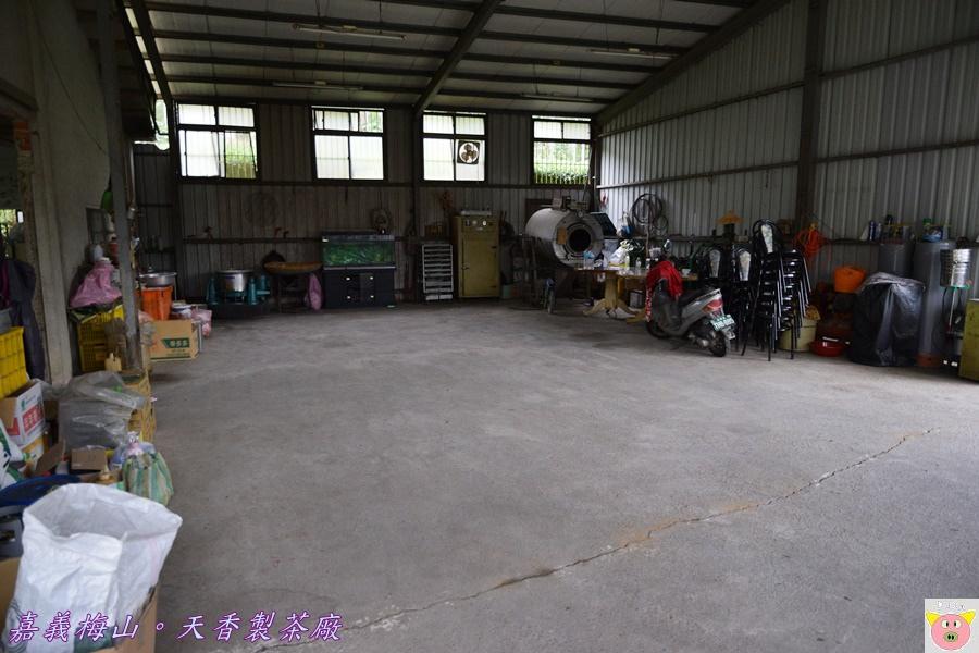 天香製茶廠DSC_2005.JPG