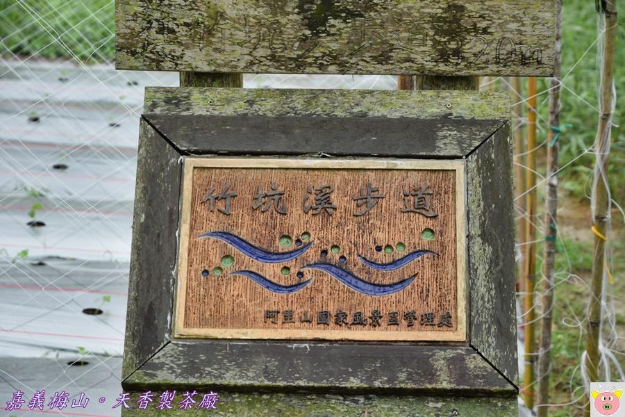 天香製茶廠DSC_2074.JPG