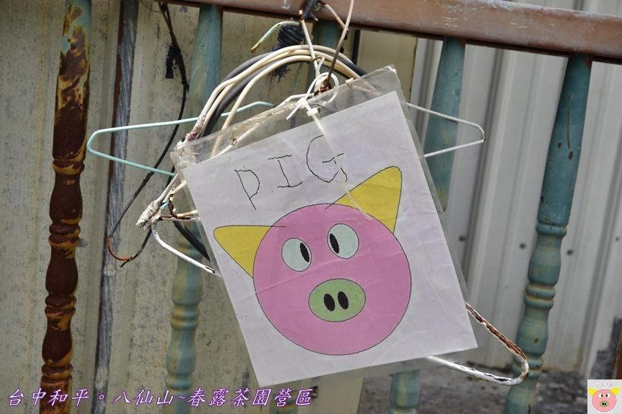 春露茶園DSC_2670.JPG