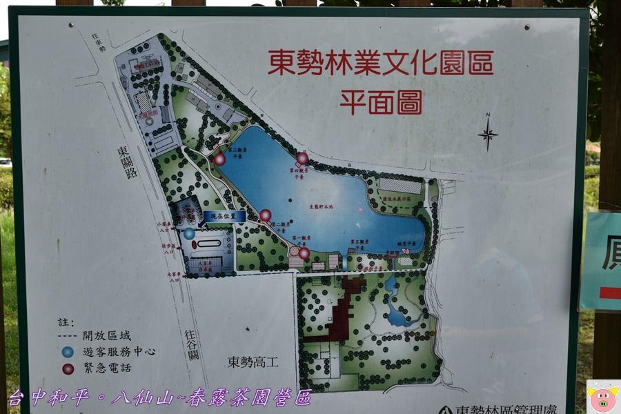 春露茶園DSC_2996.JPG