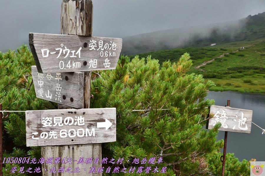 DSC_4401.JPG