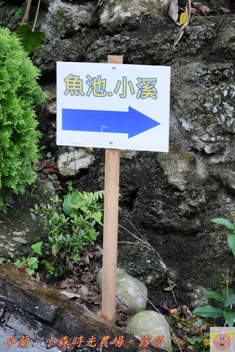 小森時光DSC_6760.JPG