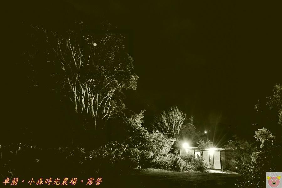 小森時光DSC_6881.JPG