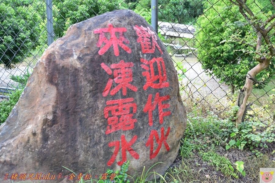 金青松DSC_9311.JPG