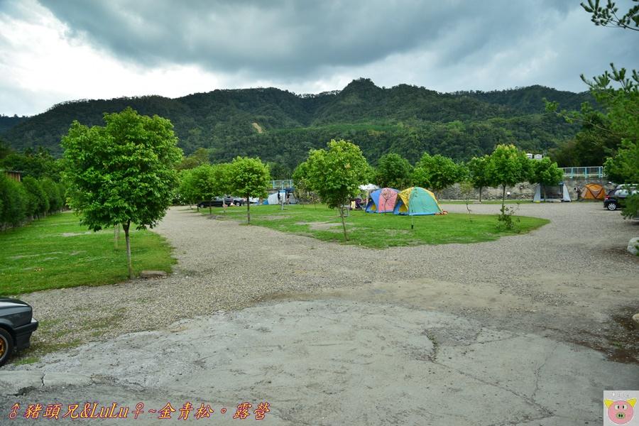 金青松DSC_9357.JPG