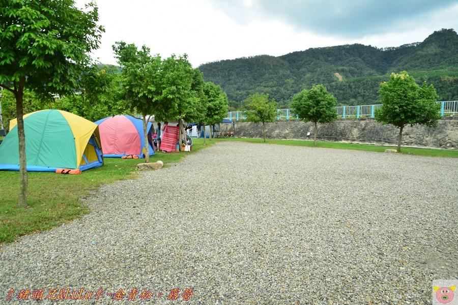 金青松DSC_9363.JPG