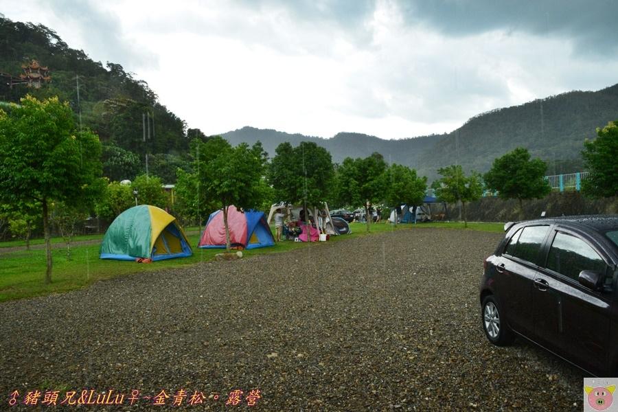 金青松DSC_9382.JPG