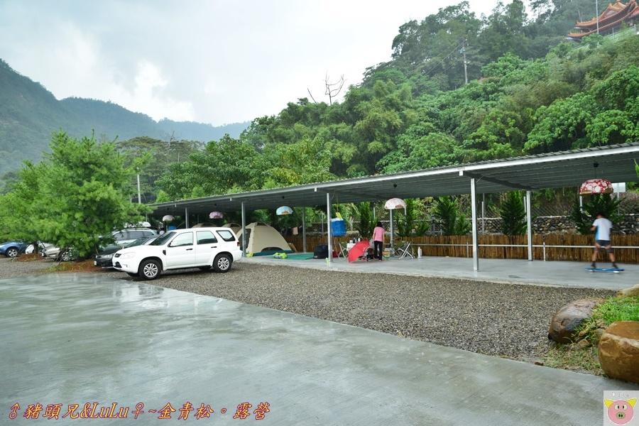 金青松DSC_9392.JPG