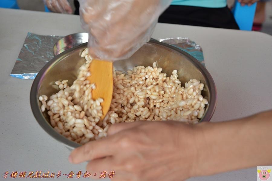 金青松DSC_9460.JPG