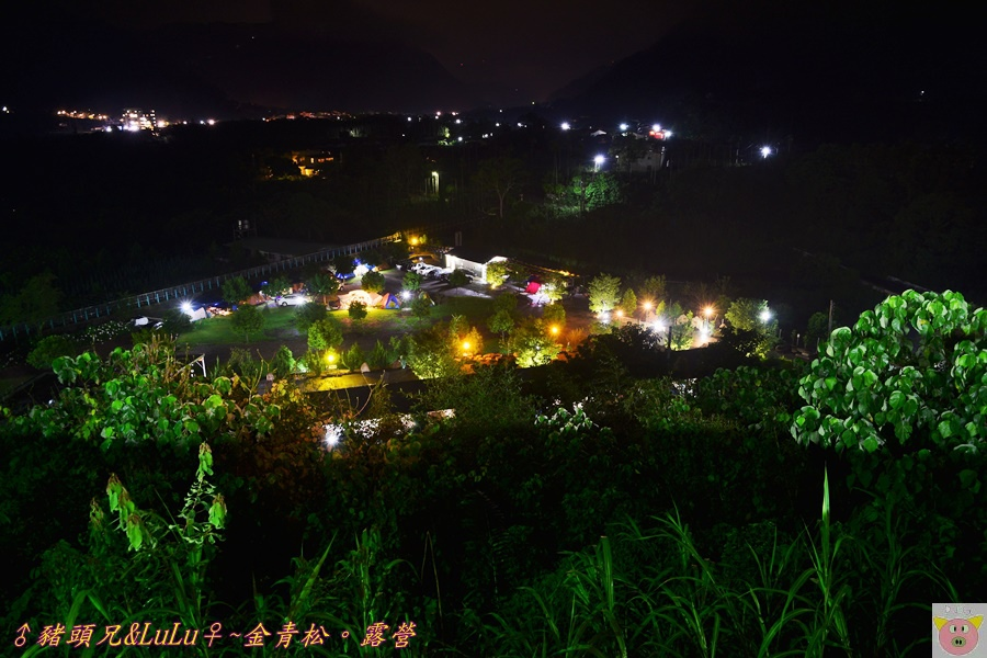 金青松DSC_9720.JPG