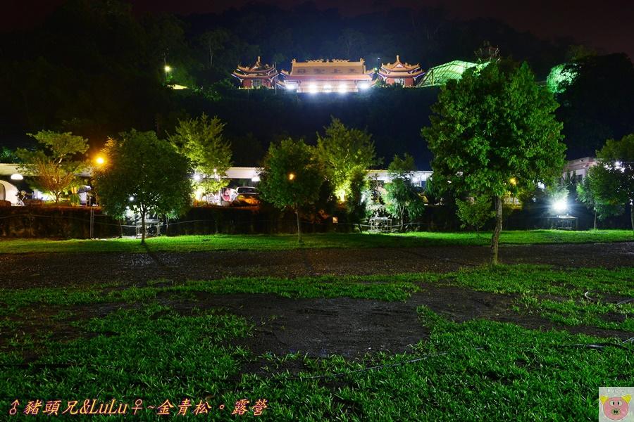金青松DSC_9772.JPG