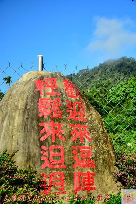 金青松DSC_9902.JPG