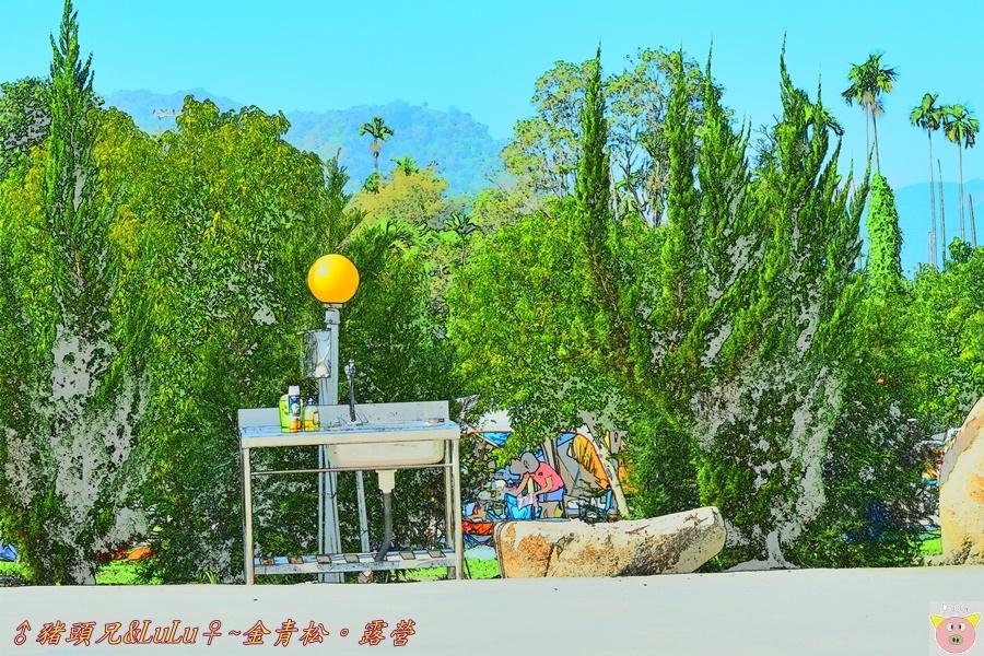 金青松DSC_9950.JPG