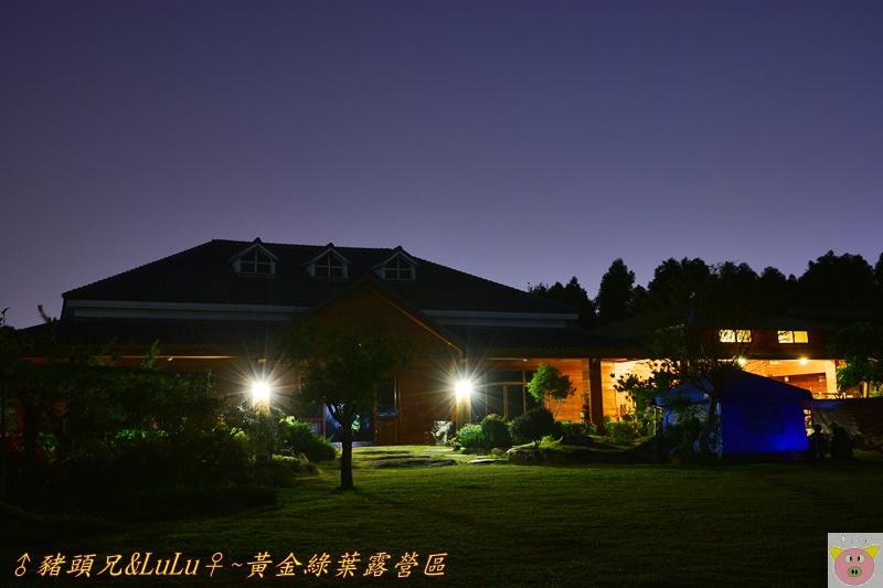 黃金綠葉DSC_0132.JPG