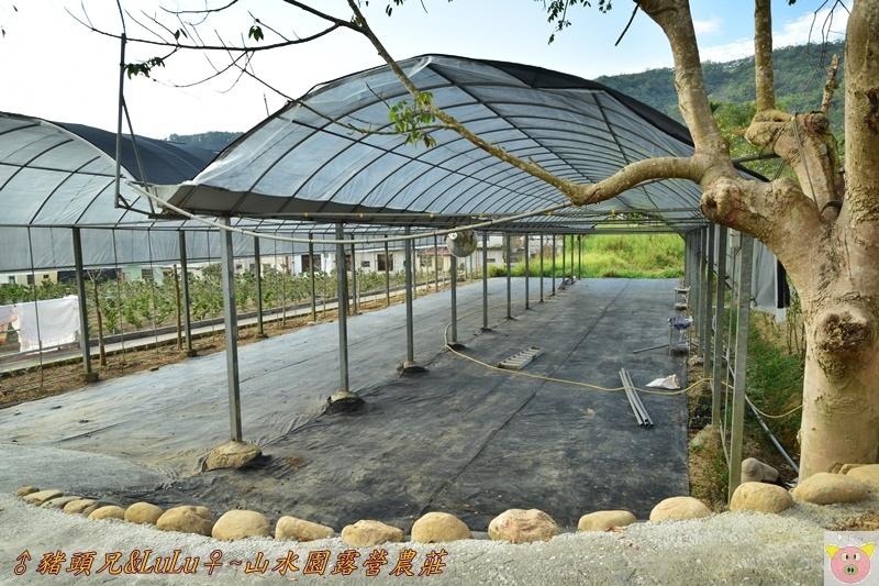 山水園露營DSC_0022.JPG