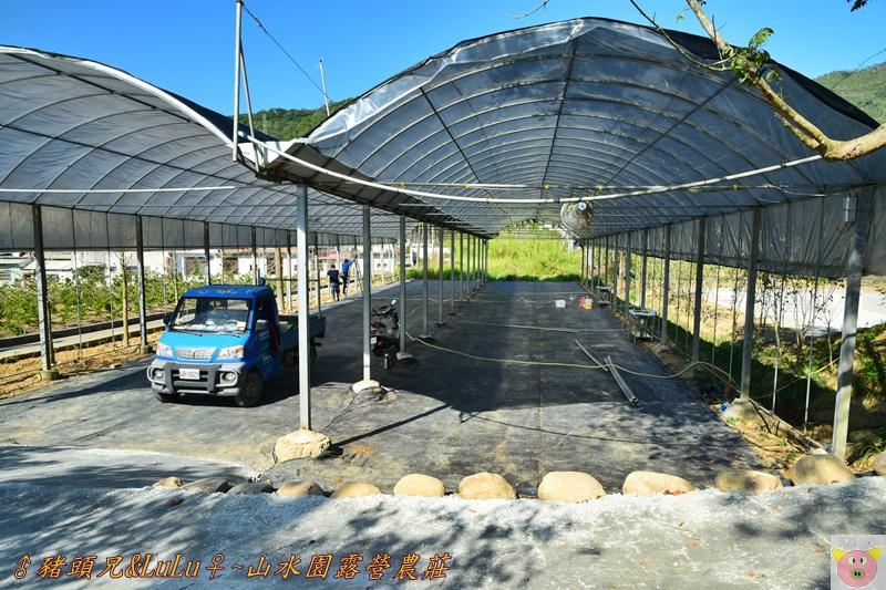 山水園露營DSC_0480.JPG