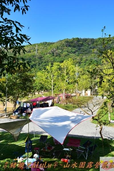 山水園露營DSC_0536.JPG