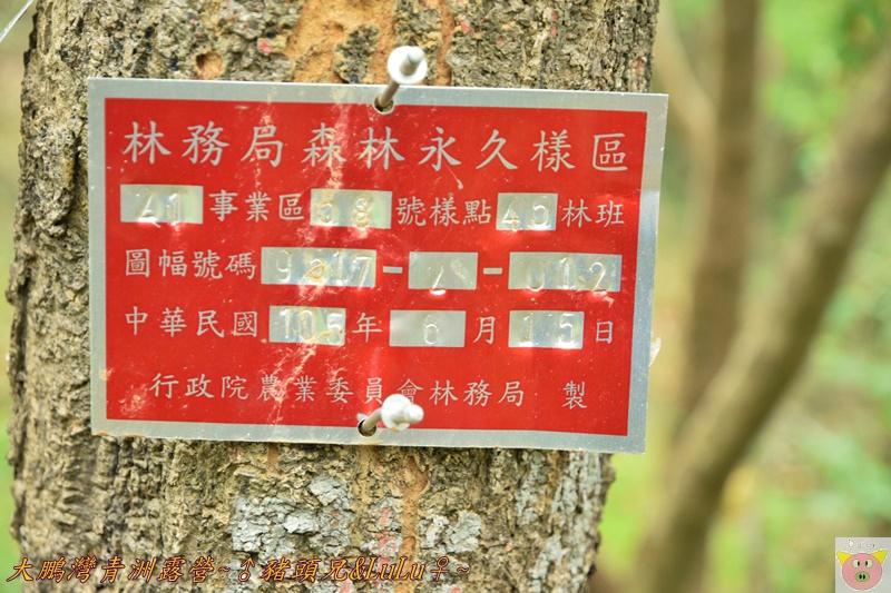 大鵬灣青洲露營DSC_0279.JPG