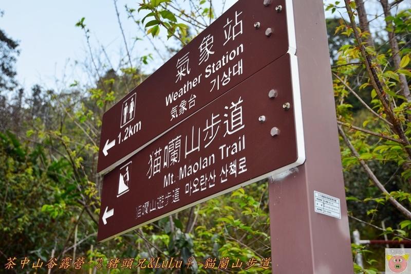 茶中山谷露營DSC_0005.JPG