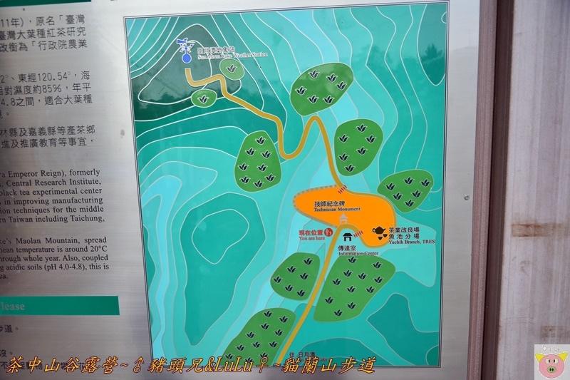 茶中山谷露營DSC_0002.JPG