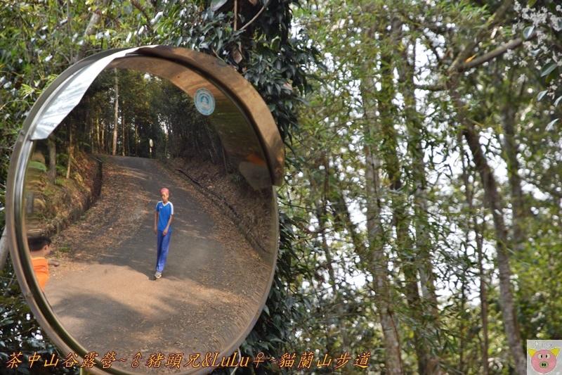 茶中山谷露營DSC_0124.JPG