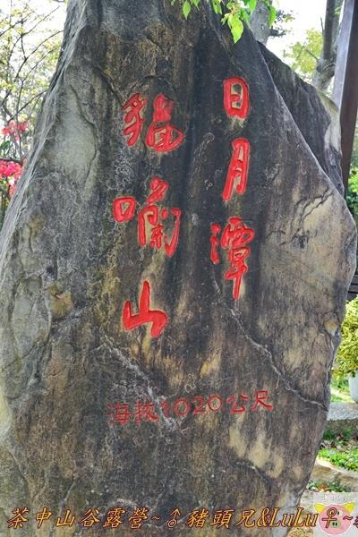 茶中山谷露營DSC_0152.JPG