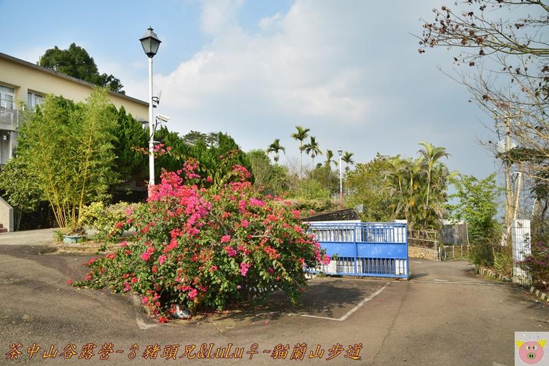 茶中山谷露營DSC_0149.JPG