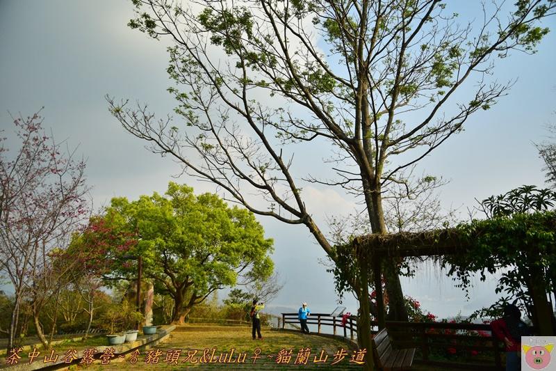茶中山谷露營DSC_0163.JPG