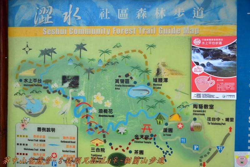 茶中山谷露營DSC_0356.JPG