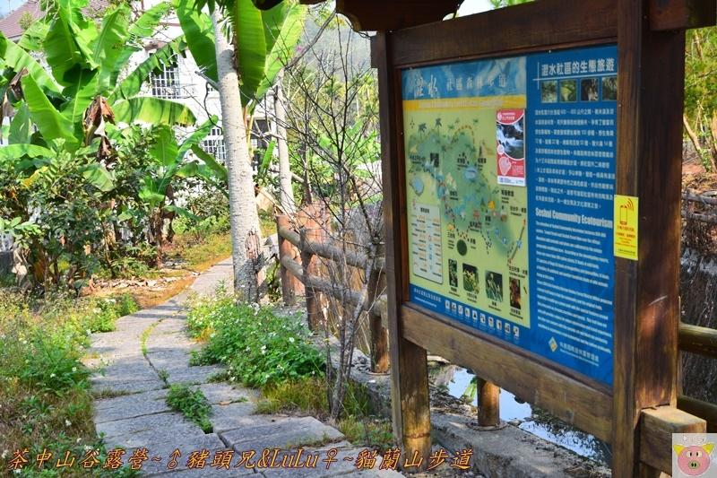 茶中山谷露營DSC_0355.JPG