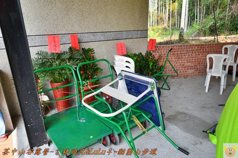茶中山谷露營DSC_0430.JPG