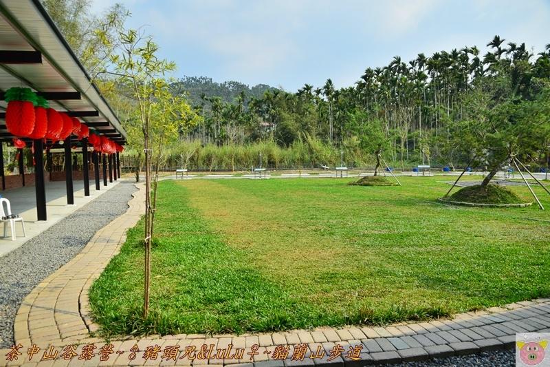 茶中山谷露營DSC_0445.JPG