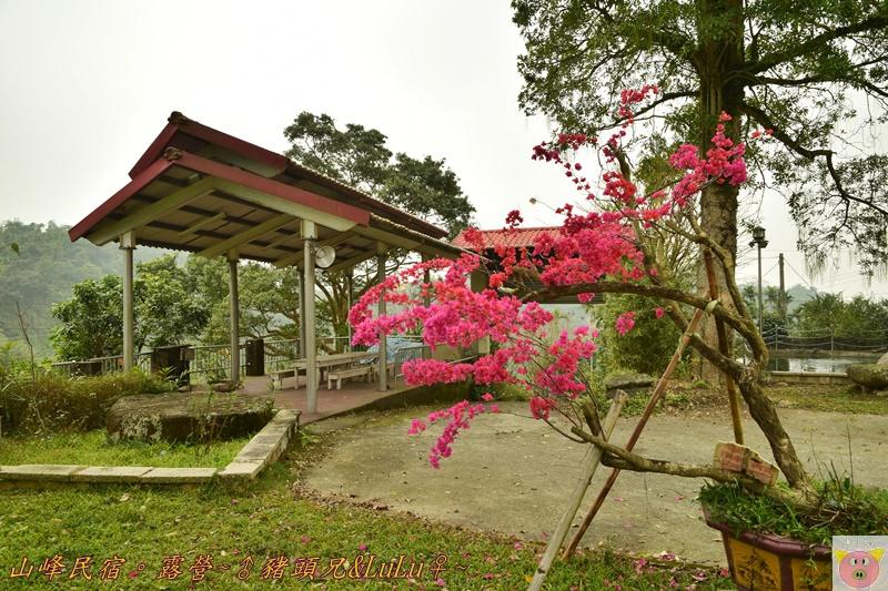 山峰民宿露營DSC_0049.JPG
