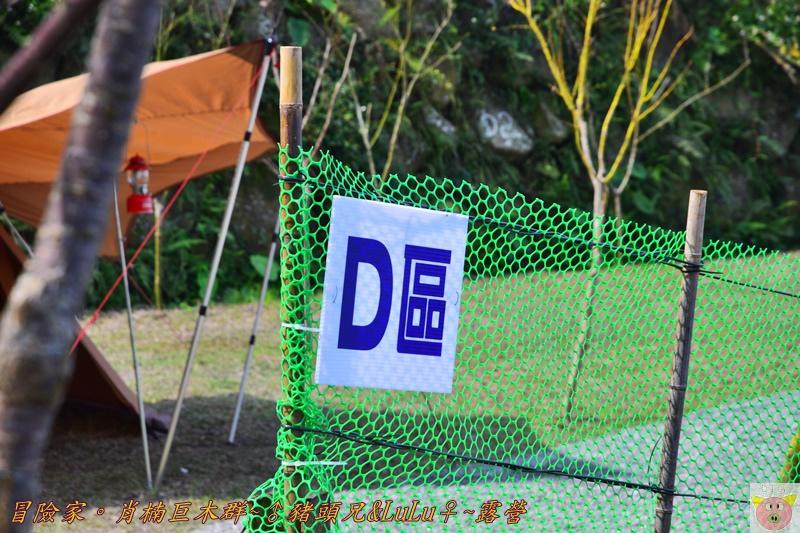 肖楠巨木群DSC_0071.JPG