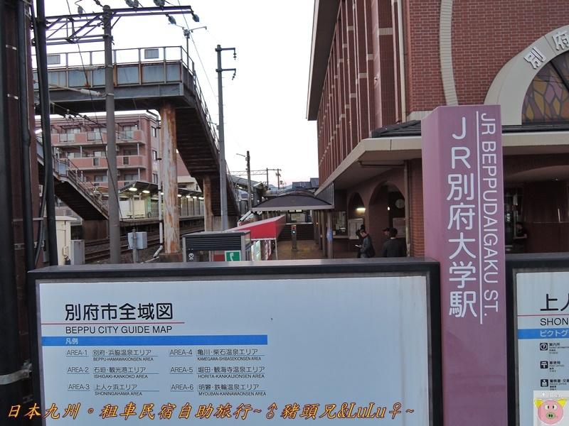 日本九州DSCN8509.JPG