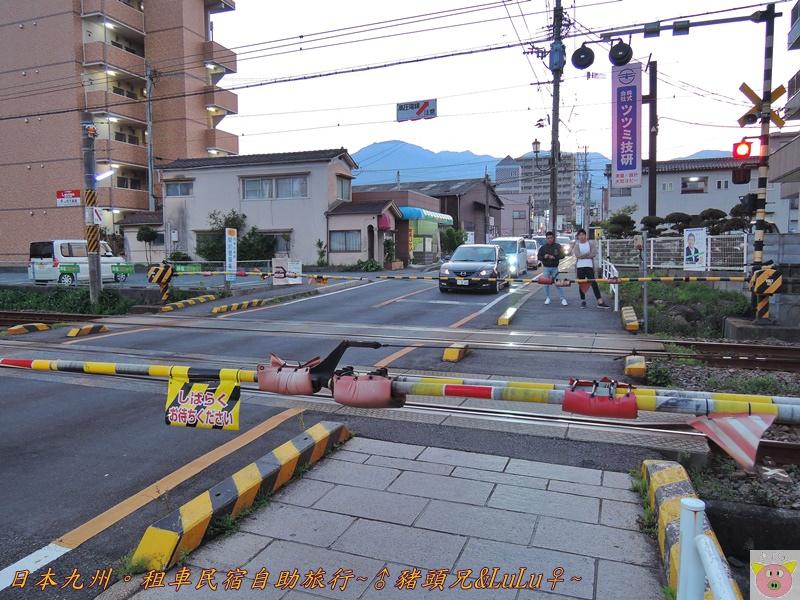 日本九州DSCN8513.JPG