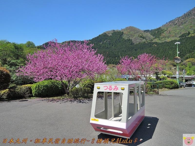 日本九州DSCN8539.JPG