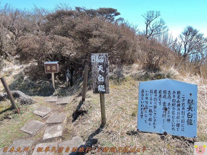 日本九州DSCN8621.JPG