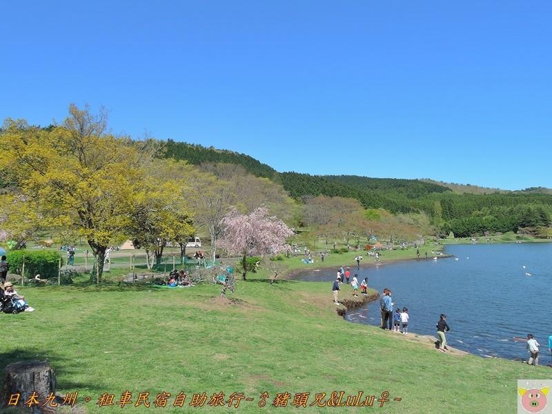 日本九州DSCN8663.JPG