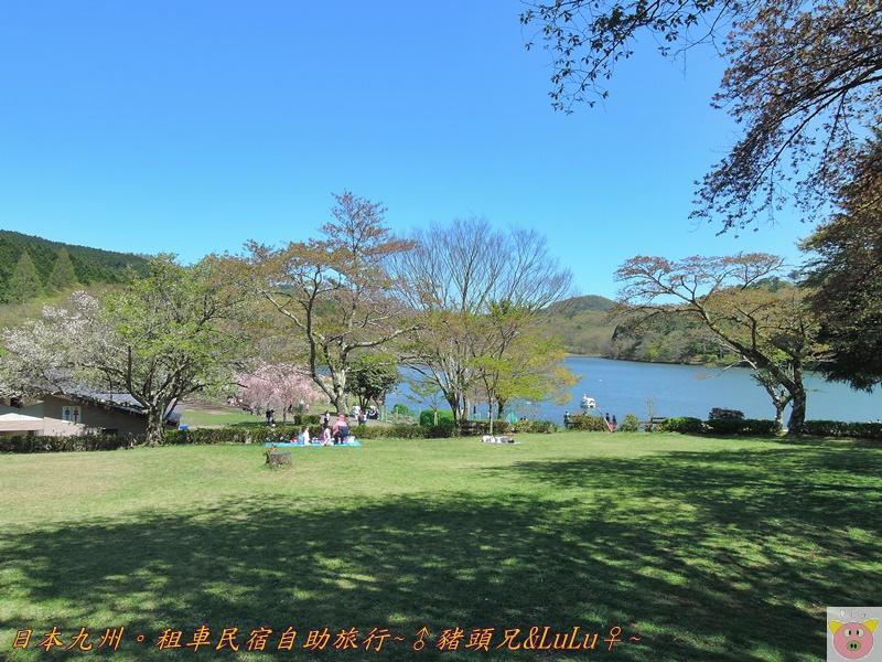 日本九州DSCN8661.JPG
