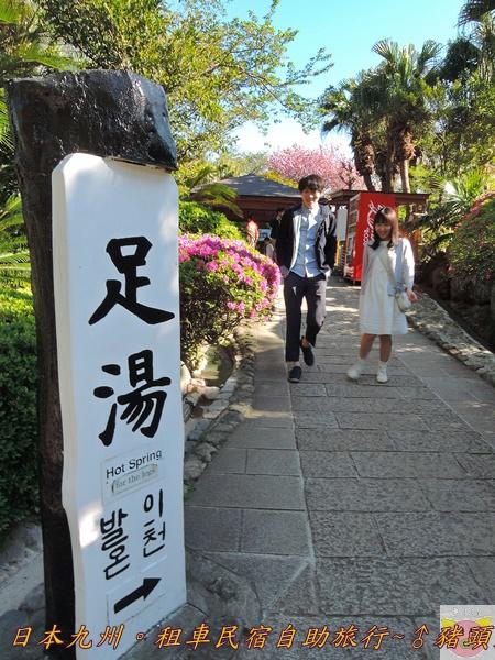 日本九州DSCN8727.JPG